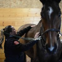 Lesley McGill   The Saddle Doctor